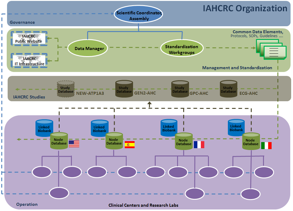 Organization of the IAHCRC Consortium